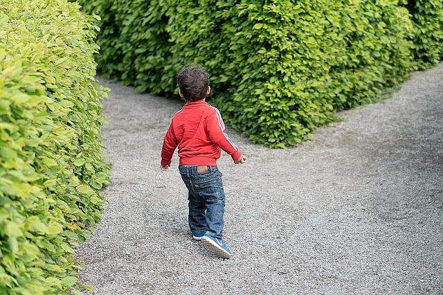 アドセンス外注化の必要性を感じる時!庭で迷子 私はどこ?ここは誰ー?